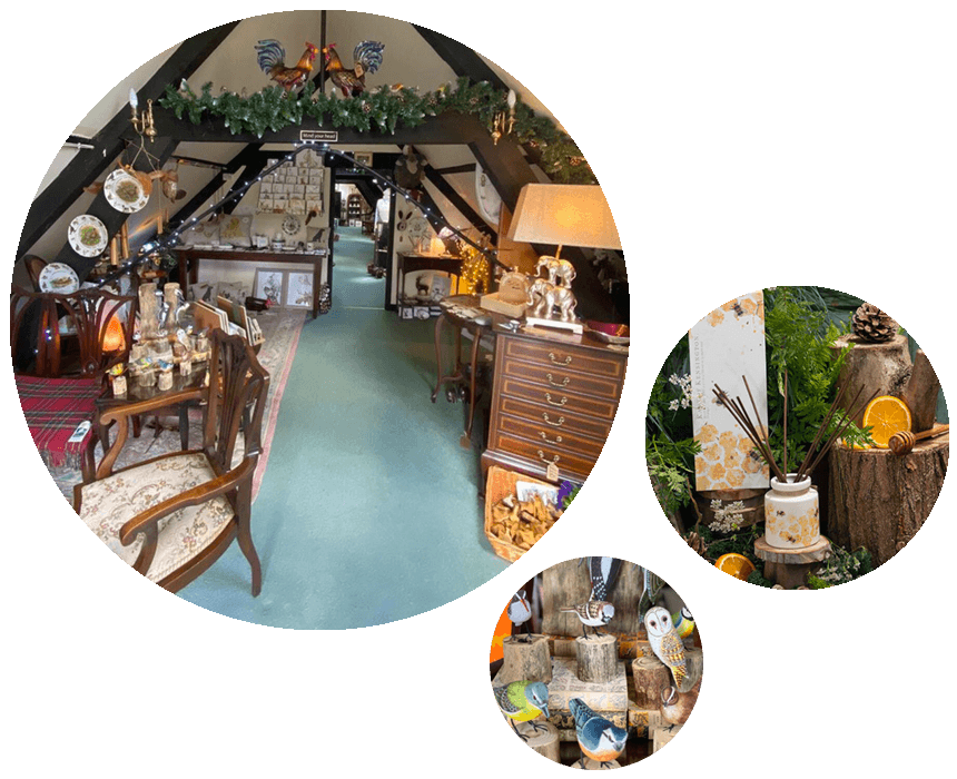 Curios-Barn-Boutique-Shop-Winchester